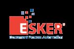 Grupo Esker